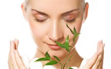modello con foglie di eucalipto che apre le mani